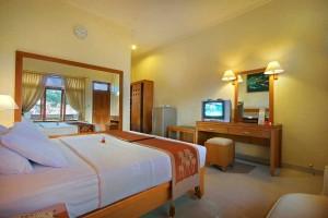 Superior-Room-B